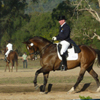 Young Dressage Championships 2010